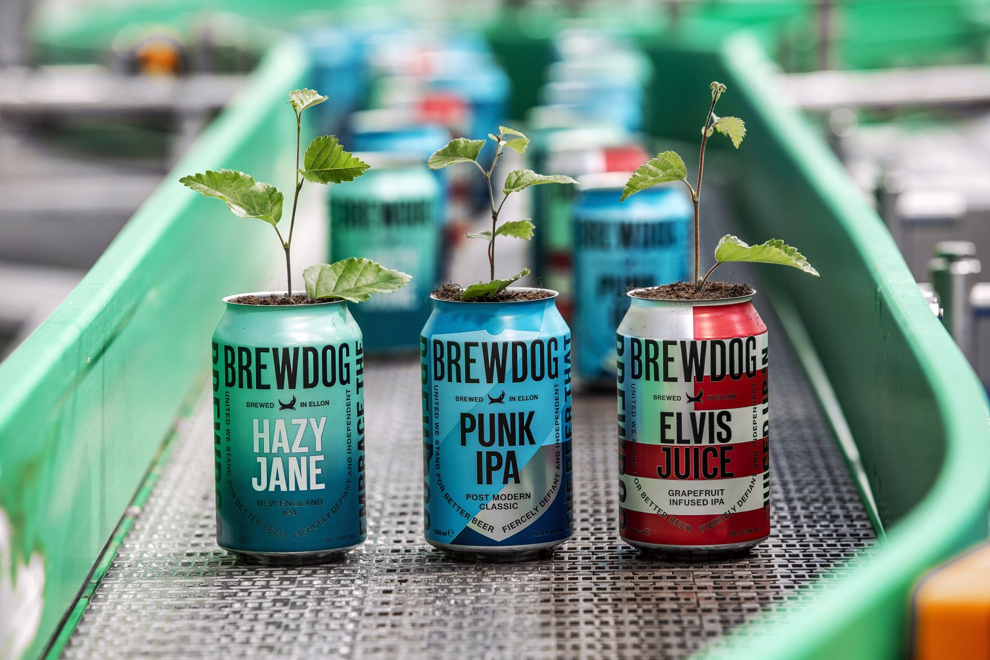 BrewDog Cans Growing Plants